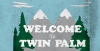 twinpalm2014