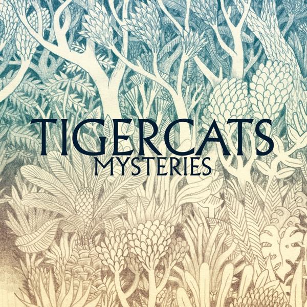 Tigercats, Mysteries (Fortuna Pop!, 2015)