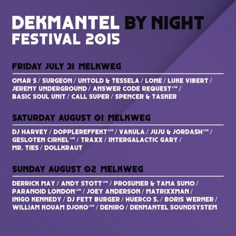 dekmantel_2015_night