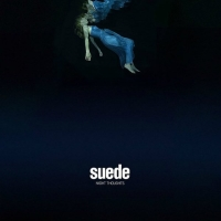 suede - night t