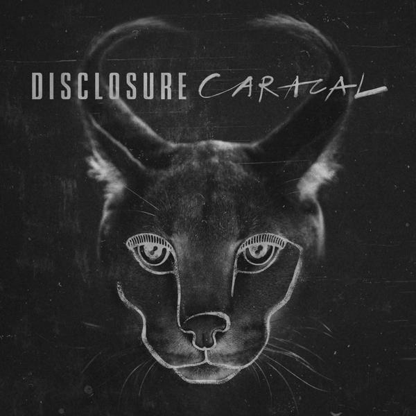 Disclosure_caracal