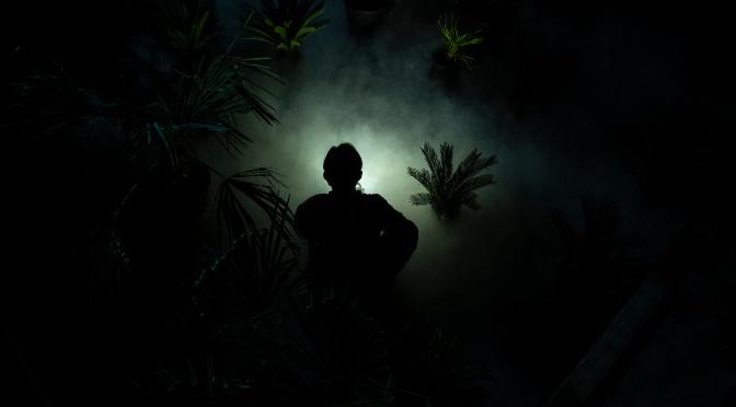 Crítica: La nit de la iguana, en el TNC